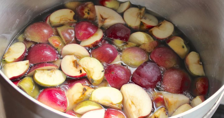 Самогон из яблок в домашних условиях простой рецепт