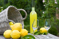 Ликер лимончелло: что это, как и счем пить и сколько градусов