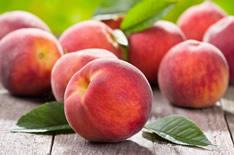Наливка и настойка на персиках: 9 рецептов в домашних условиях