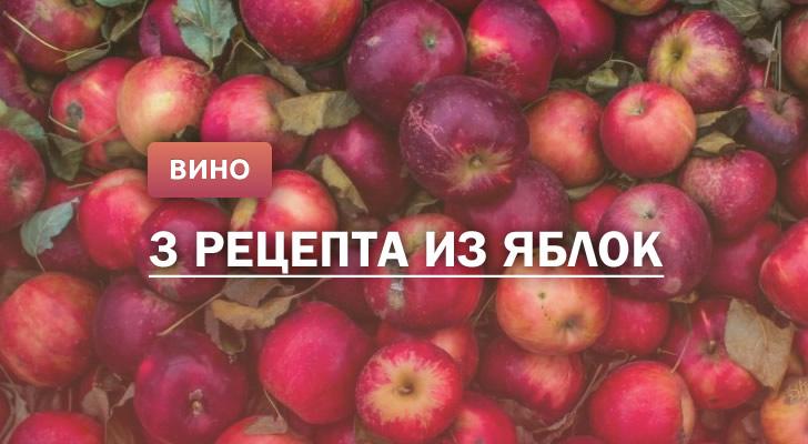 Вино из яблок: 3 рецепта в домашних условиях