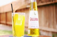 Гальяно ликер – все о легендарном итальянском алкоголе