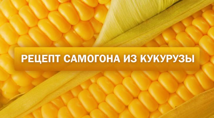 Самогон из кукурузы: рецепт в домашних условиях