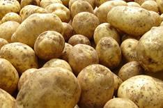 Самогон из картофеля: рецепт в домашних условиях