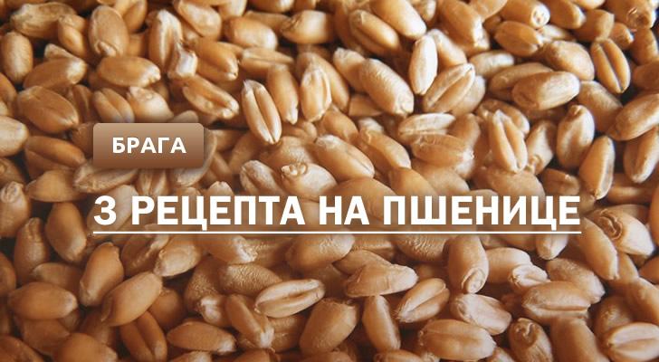Брага на пшенице: 3 рецепта в домашних условиях
