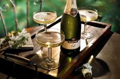 Шампанское Асти: обзор марок и вкусов + как отличить подделку