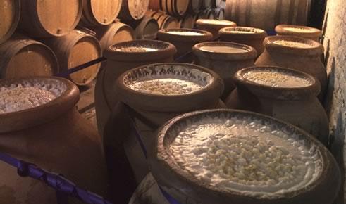 Виды емкостей для брожения вина + как выбрать