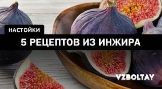 Настойка на инжире: 5 рецептов в домашних условиях