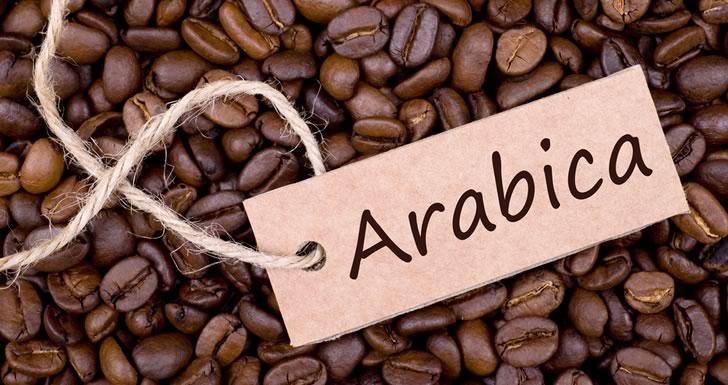 Какой кофе подходит для турки