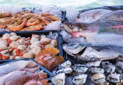 Вино к рыбе: правильные сочетания от сомелье