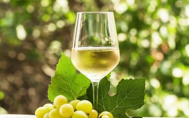 Вино Алиготе: история, обзор сорта и марок + как пить