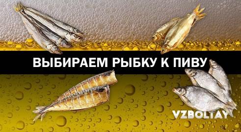 Выбираем рыбку к пиву: все нюансы в одном месте