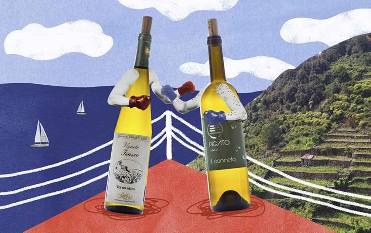 Верментино: обзор сорта, что стоит попробовать, профиль вина, отличия по регионам