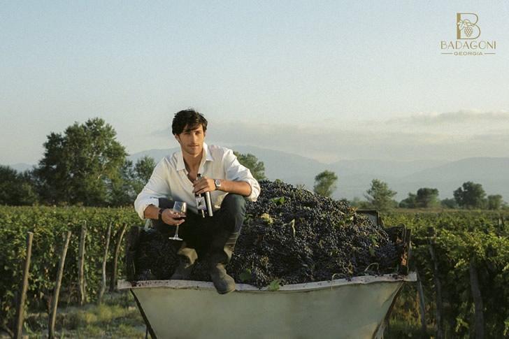 Виды вин Badagoni