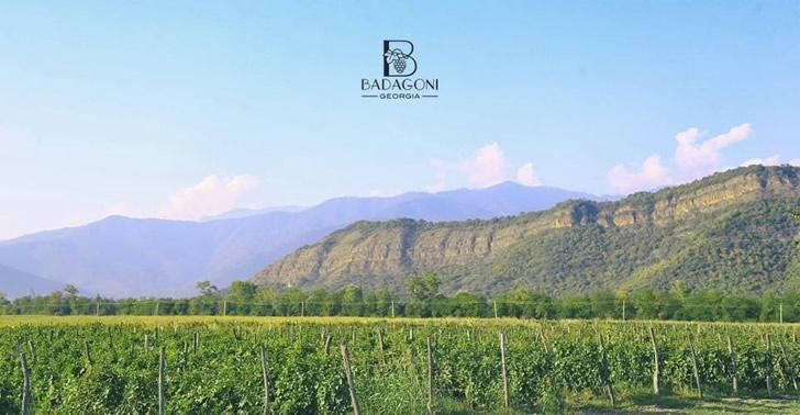 Местоположение Badagoni