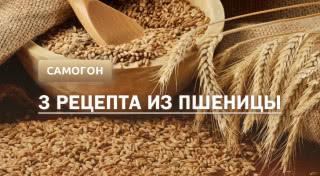 Самогон из пшеницы: 3 рецепта в домашних условиях