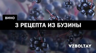 Вино из ягод бузины: 3 рецепта в домашних условиях