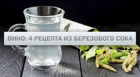 Вино из березового сока: 4 рецепта в домашних условиях