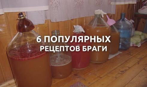 6 популярных рецептов браги в домашних условиях